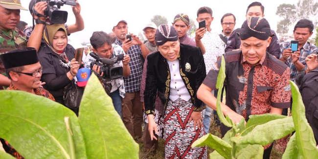 Gubernur Jateng Minta Menteri Perdagangan Batasi Impor Tembakau