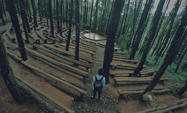 Ayuk, Nikmati Indahnya Wisata Alam Hutan Pinus  di Yogyakarta