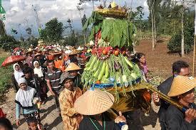 Among Tebal Tradisi Warga Temanggung Awali Tanam Tembakau