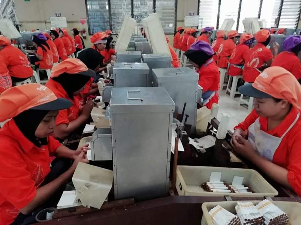 Cukai Rokok Naik, 4.000 Tenaga Kerja Dipangkas
