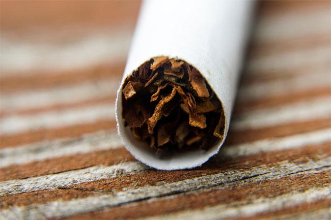 Serapan Tembakau Rendah dan Harga Anjlok, Petani Minta Keadilan