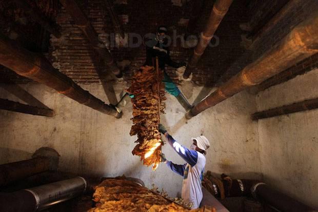Hasilkan Cukai Rp1 Triliun, Industri Tembakau di Jatim Berpotensi Tumbuh Subur